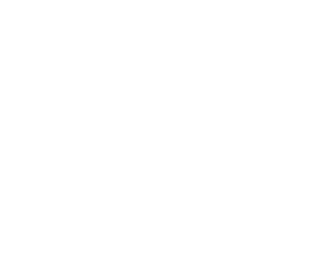 balkin-home-slider-logo4